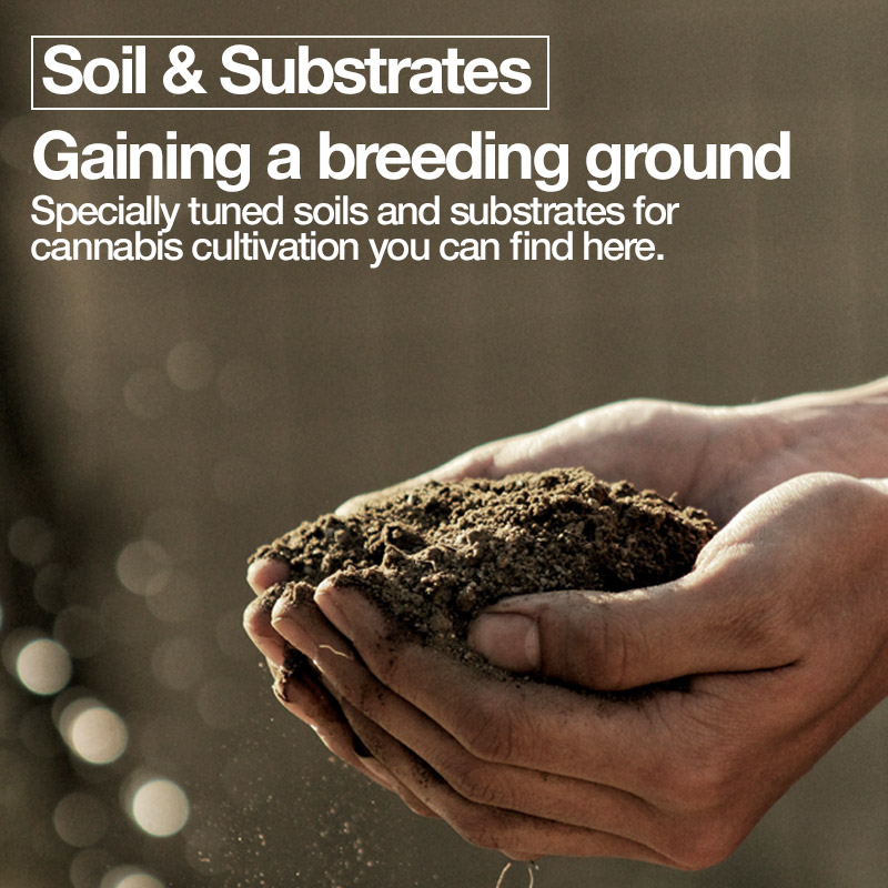 Soil & Substrates