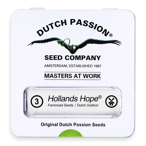 Dutch Passion Hollands Hope | Fem | 3er